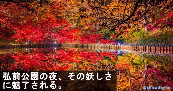 青森異世界だな!弘前公園の紅葉が美しすぎて息をのむ