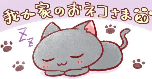 【洗濯物/換毛期】我が家のおネコさま 第20話
