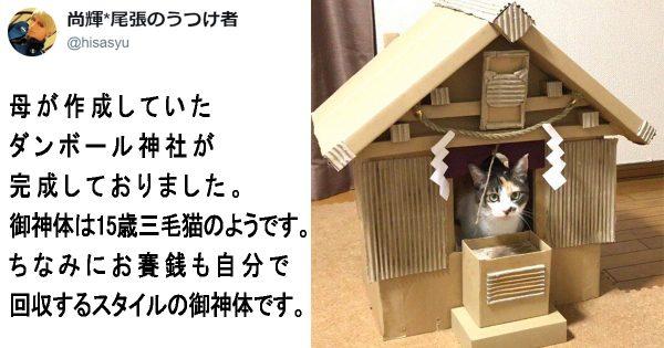 母が制作した「ダンボール神社」のクオリティが高すぎる!捨て猫から御神体になったニャンコ