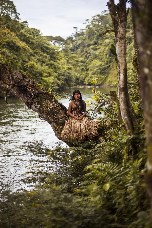 2.Amazon Rainforest