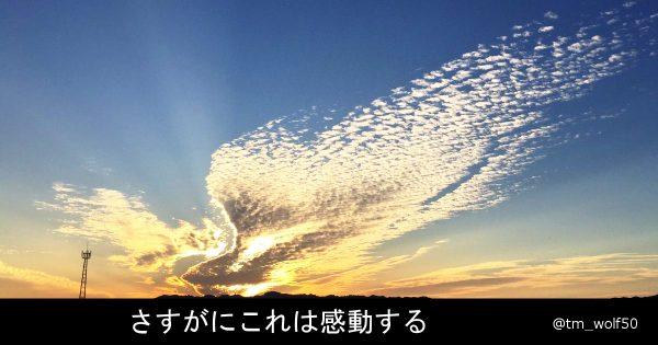 新潟の空に「火の鳥」が出現!11月3日 手塚治虫の誕生日に奇跡が起きた