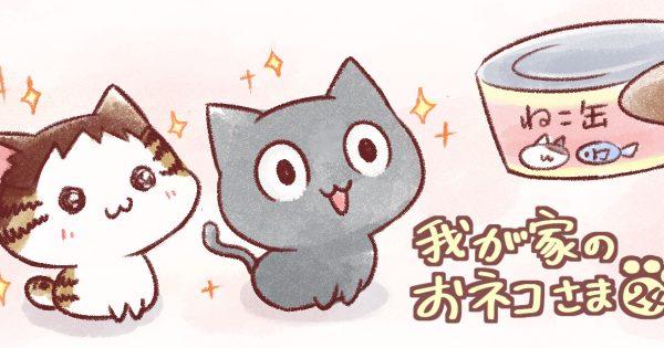 【赤ちゃん/猫は肉食】我が家のおネコさま 第24話