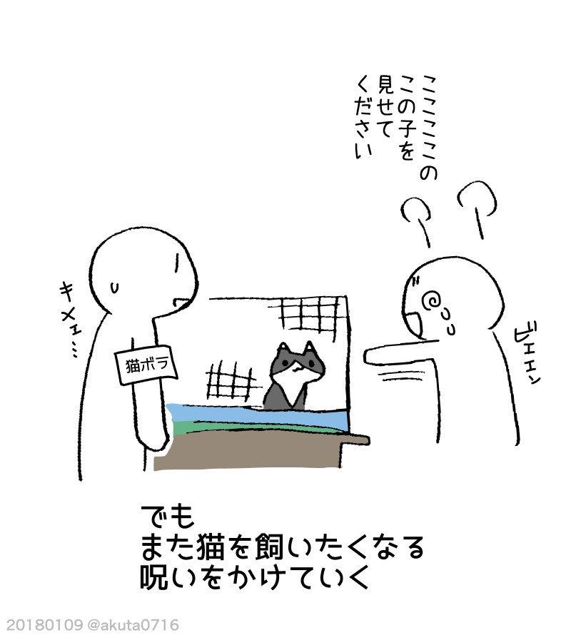 ネコを飼うのは大変