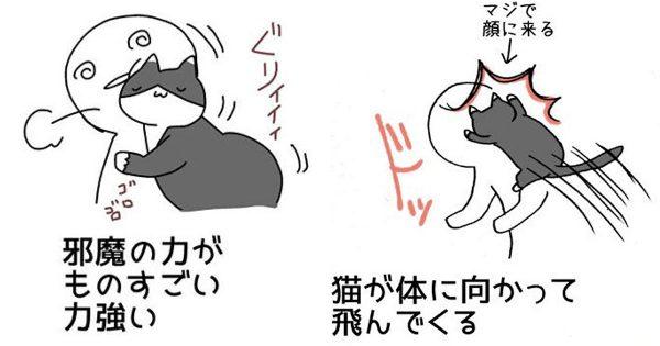 犬より楽とか言わないで!「猫と一緒に暮らす大変さ」を描いたイラストに胸が熱くなる