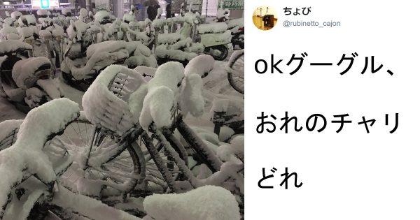 【Google先生もソレはわかんないww】雪がもたらした悲劇 6選