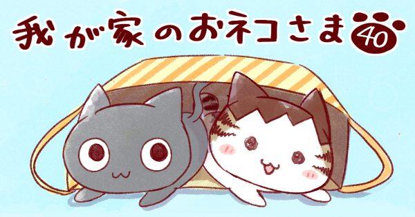 【人間のご飯/猫七不思議のひとつ】我が家のおネコさま 第40話