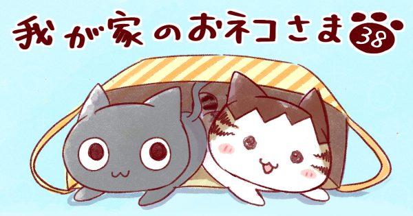 【横着ネコ/毎日同じ】我が家のおネコさま 第38話