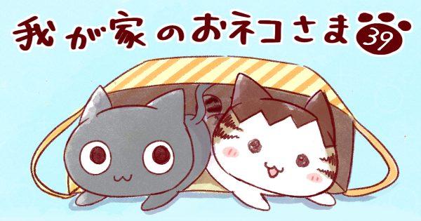 【猫めっちゃあるある/猫七不思議のひとつ】我が家のおネコさま 第39話