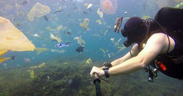 バリ島のビーチに押し寄せるプラスチックのゴミ。ダイバー撮影の映像に考えさせられる