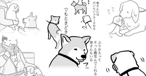 柴犬さんのイケメンっぷりにも惚れる!とある漫画家とパグの日常エッセイに癒される人続出中