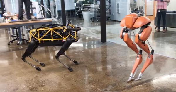 ついに2人は出会った!最先端歩行ロボットが戯れる映像が完全に未来