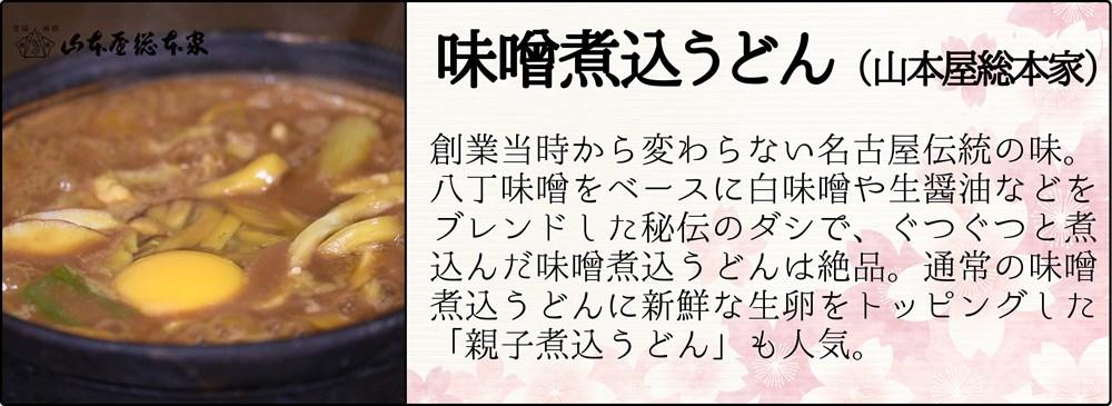 味噌煮込みうどん_R