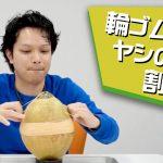 【フルーツ界最強硬度】ヤシの実に輪ゴムを巻き続けたらいつかは割れるのか?