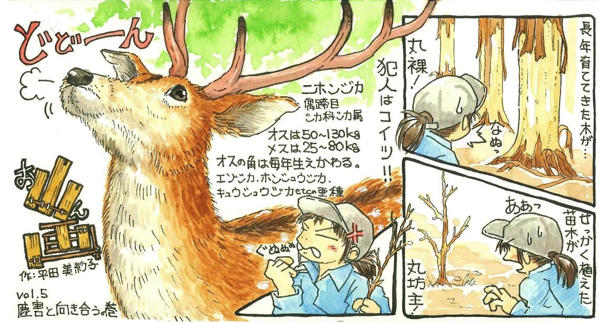 このマニアックさ、好き! 緑を学べる優しいタッチの漫画『お山ん画』
