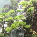 水槽の中に滝!砂で作られた滝がある、幻想的なアクアリウムに見惚れる