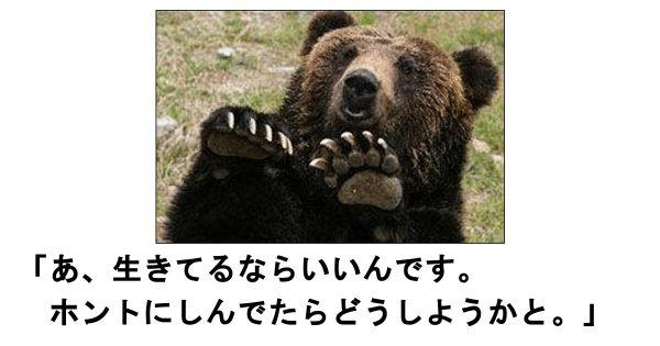 意外とかわいいギャップに笑う!電車で読んだら危険なクマのボケて 11選
