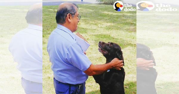 郵便屋さんが大好きな犬!配達ルートが変わって会えなくなった郵便屋さんが突然訪問して大喜び!