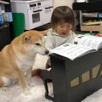 柴犬に童謡「チューリップ」を、ピアノを演奏して教える女の子!心がほっこりすると話題