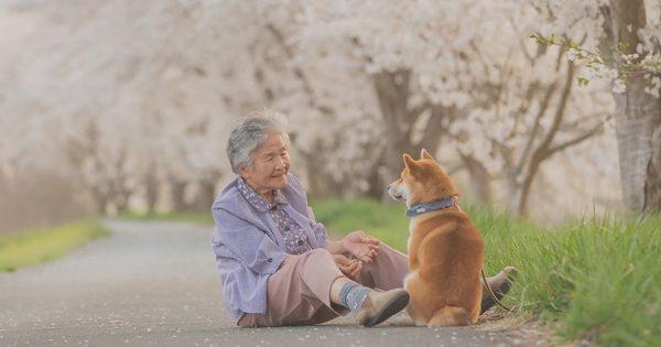 「もう後悔はしたくない」おばあちゃんフォトにこだわり続けたある写真家の決意とは