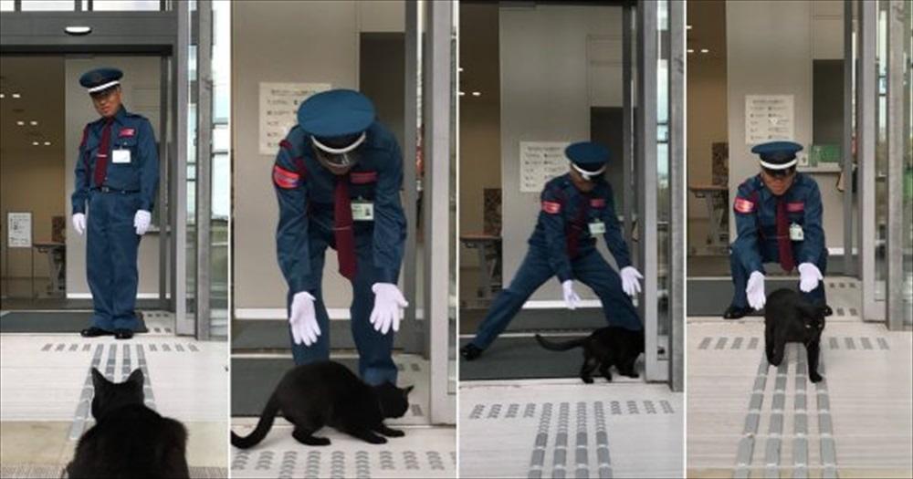警備員VS猫
