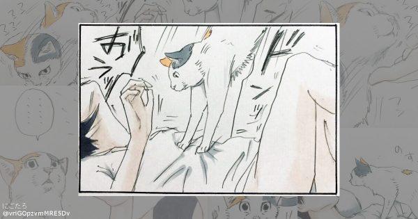 「ネコあるある」に超共感!猫と飼い主の日常を描く4コマ漫画が話題 11選