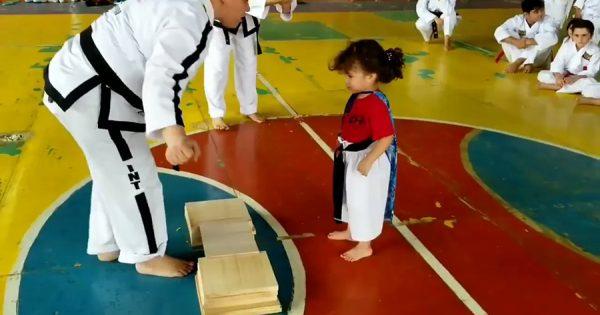 板割りに挑戦する小さな女の子が反則級の可愛さ!先生の真似をして、全然板を割らない