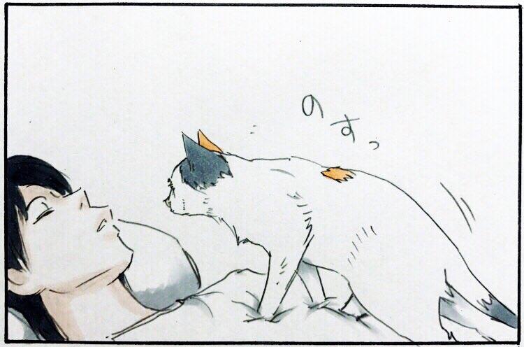 寝たふり2