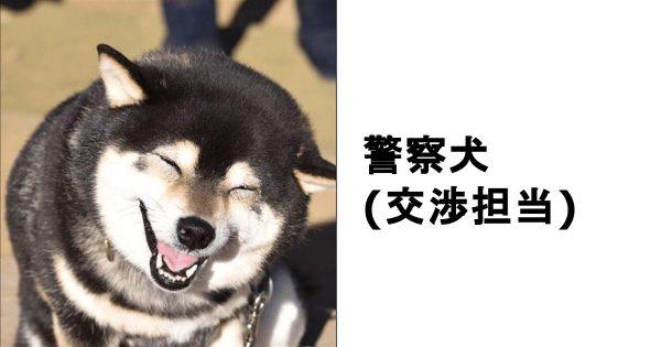 笑いの陰には裏があるかも?動物の笑顔がみせる秀逸ボケて 11選