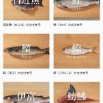 サバやアジ、タコや貝まで!あらゆる魚の「さばき方」を紹介した『日本さばけるプロジェクト』