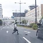 京都駅付近で大通りに迷い込んだ子猫を女子高生が救助!「猫の恩返し見たい」