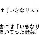 これほんとに日本…?都会の人には伝わらない田舎の日常 8選