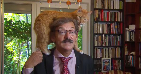 オランダのTV番組で、真面目な政治問題のインタビュー中、ニャンコが頭に乗ってくる放送事故!