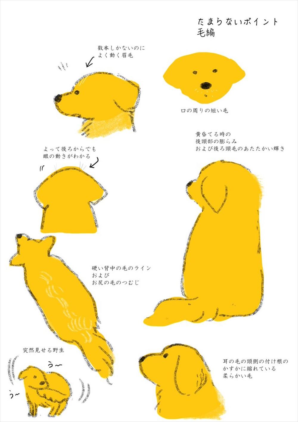 犬のイラスト2