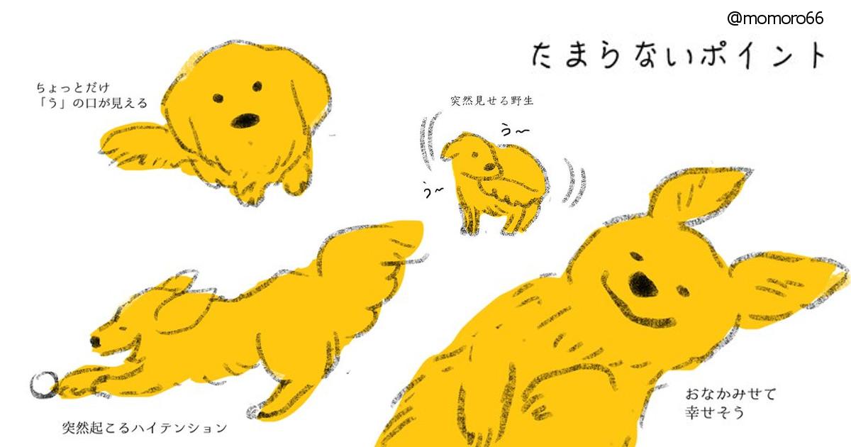 画像 たまらなく可愛いポイントはココ!「犬あるある」のほっこりイラストに犬好きが共感!!