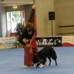 ようこそ犬ダンス世界選手権へ!ボーダー・コリーの超絶ダンスに魅了される