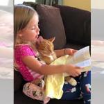 お休みの時間を迎えたニャンコに、本を読んであげる小さな女の子!2人の友情に癒やされる