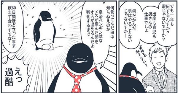 ペンギンの育休