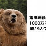 【動物大喜利】笑って癒されるアニマル爆笑ボケて10選