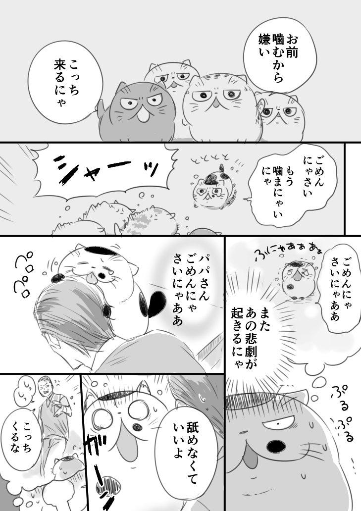 おじさまと猫31話
