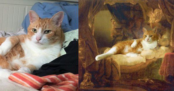 ヌードモデル、ベッドの上で「くつろぐ猫」で代用できることが判明