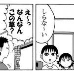 【ママは関西出身】出張!きょうの横山家 第13回