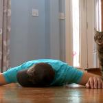 まさかのオチ!(笑) 愛猫の前でご主人が苦しんで倒れるふりをしたら、どんな反応をする?