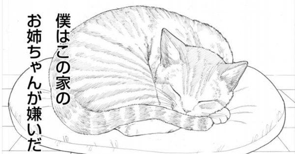 飼い主の愛情表現がウザ過ぎる?拒絶感丸出しのおしゃべり猫にカワイイの嵐!