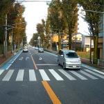 歩行者が待つ横断歩道。一般車両が次々通り抜ける中、しっかり停車するトラック