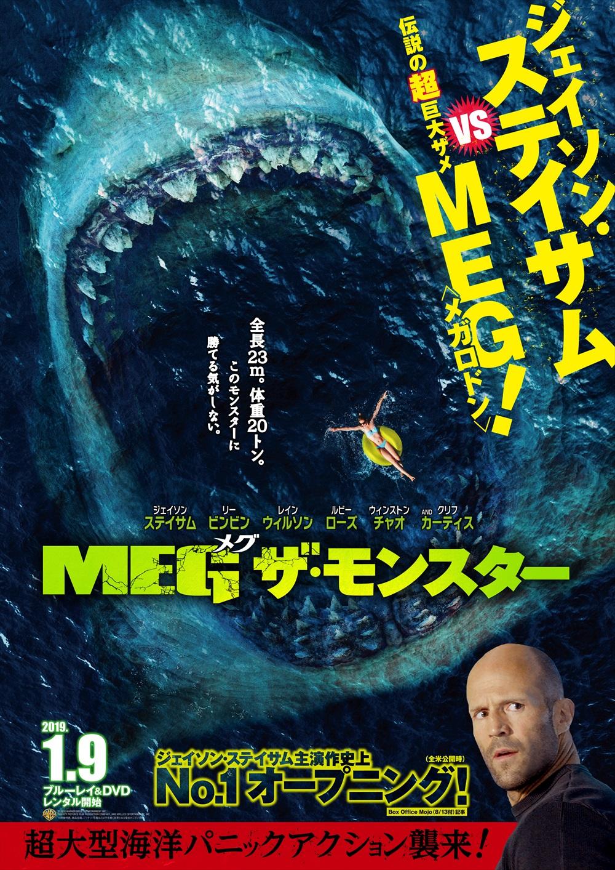 MEG_B2_tonbocut_R