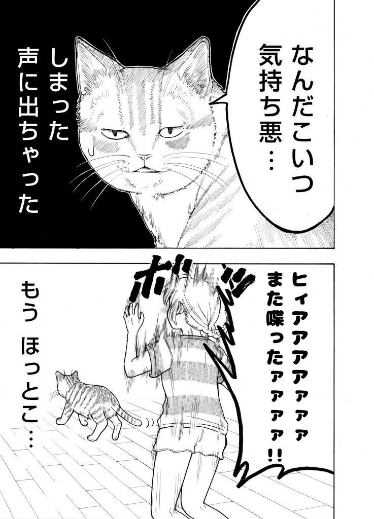 猫とお姉ちゃんの漫画 その2_03