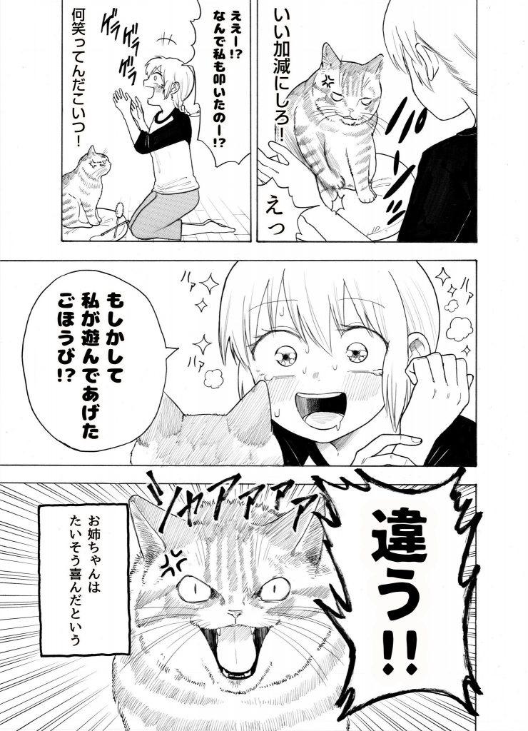 猫とお姉ちゃんの漫画 その4_03