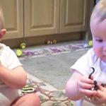 これには両親もメロメロ!お父さんのくしゃみを揃って真似する双子の赤ちゃん