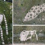 クオリティ高ッ!道に突然現れた「苔を削って描かれた」ジブリのキャラたちが神秘的