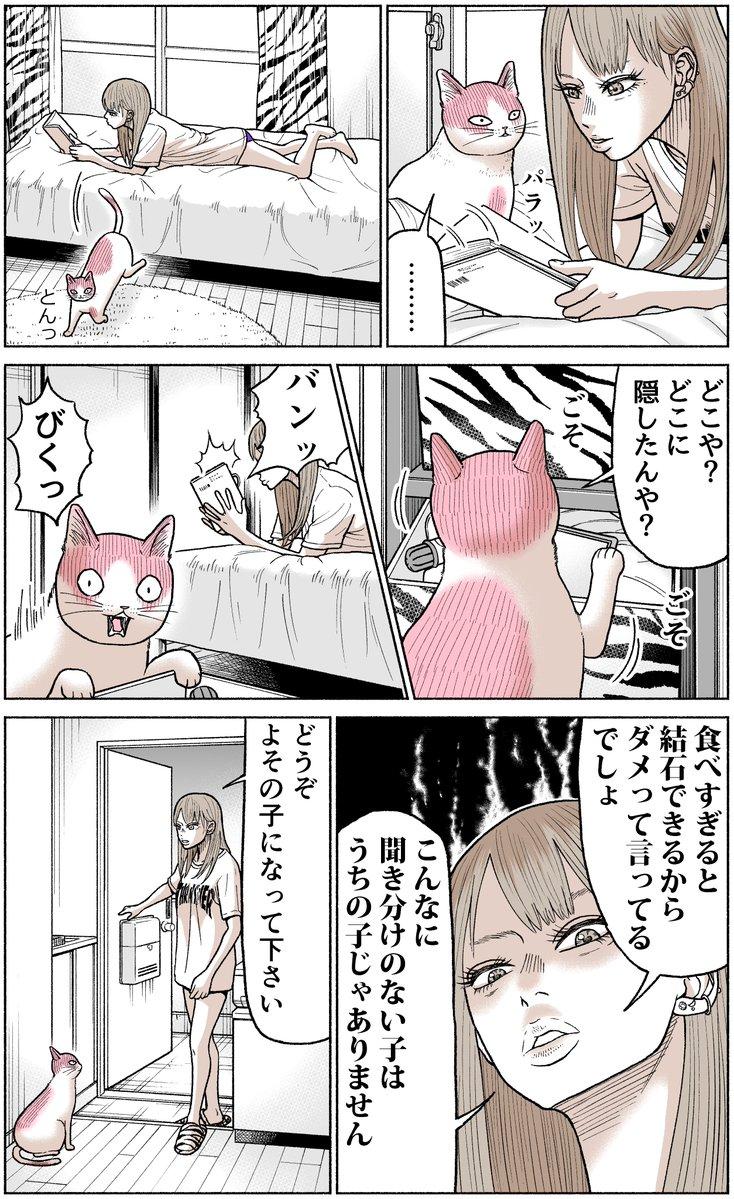 かしこい猫もも太